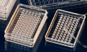 Nunclon™Δ MicroWell™ 60 and 72-Well Mini-Trays