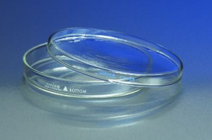 Corning® Pyrex® Petri Culture Dishes