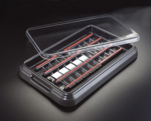 StainTray™ Slide Staining System, 20 Slide Capacity