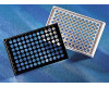 96-Well Clear Bottom Microplates, Corning®