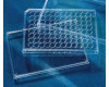 Corning® Lids for 96-Well Microplates