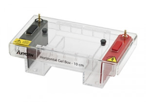 Axygen® HGB-10 Horizontal Gel Box System